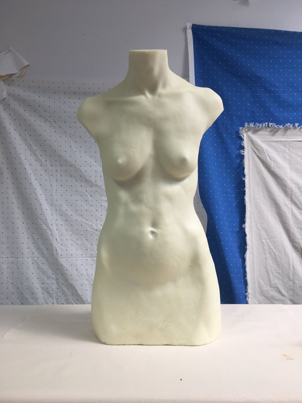 BodyCast_IMG_7319 copy.JPG