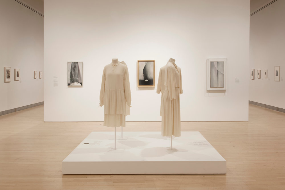 Georgia O'Keeffe: Living Modern, installation views. Copyright, Jonathan Dorado (2017). Courtesy the Brooklyn Museum.