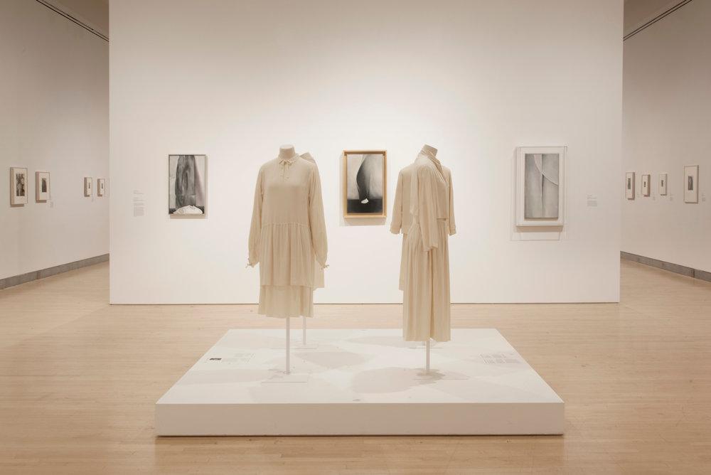 Georgia O'Keeffe: Living Modern, installation views. Copyright, Jonathan Dorado (2017). Courtesy the Brooklyn Museum.