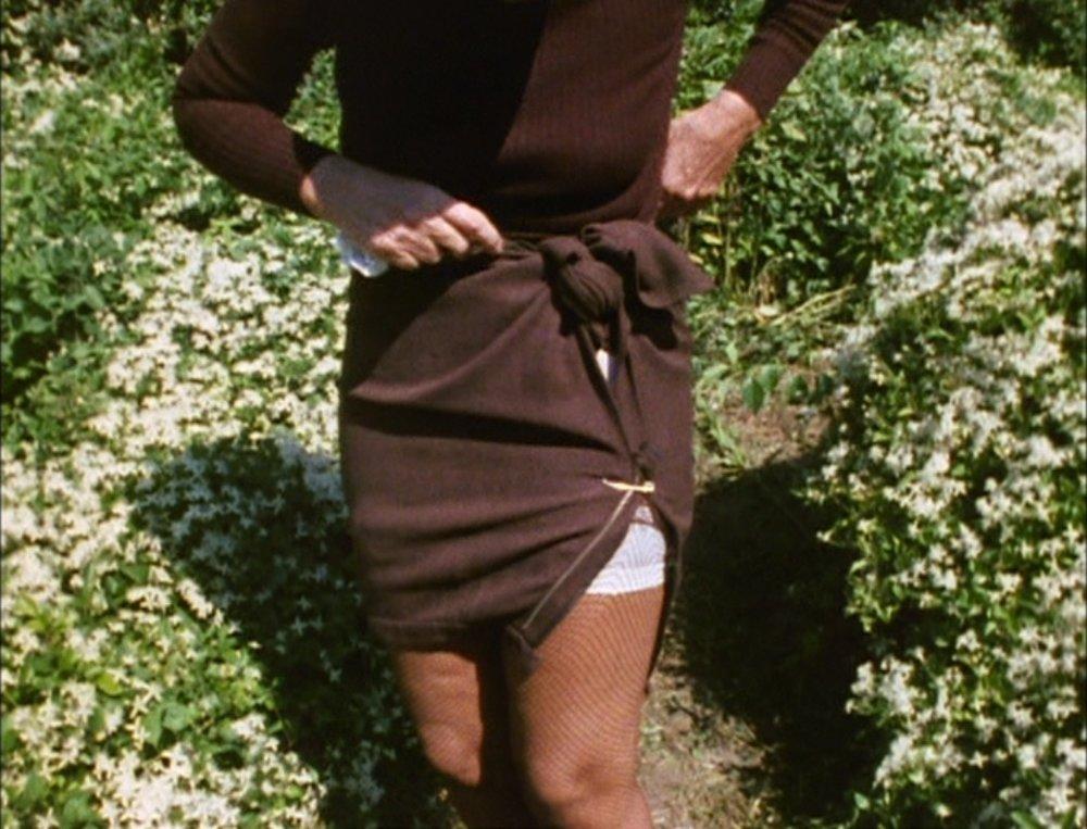Albert Maysles, David Maysles, Ellen Hovde, and Muffie Meyer, directors. Grey Gardens. Portrait Films, 1975.