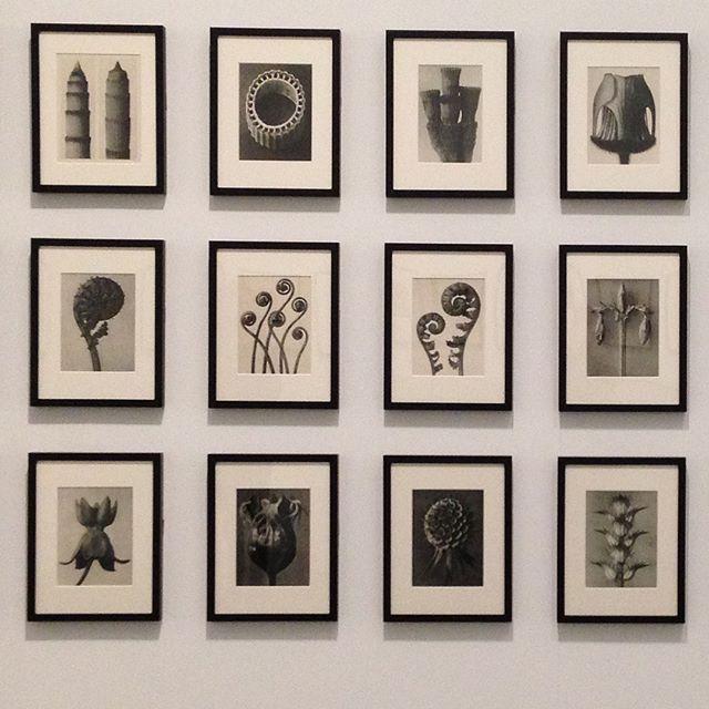 #Tate modern, an artist I love.