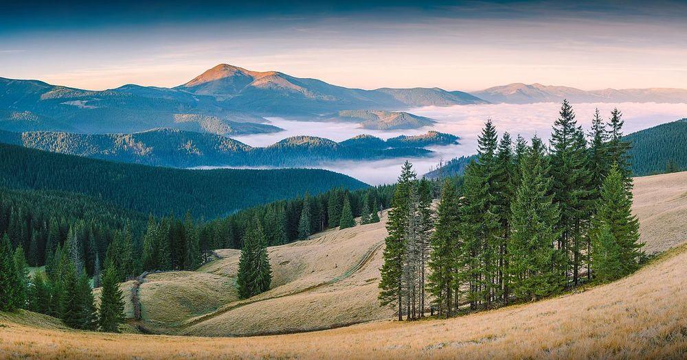 La Réserve de Biosphère des Carpathes, Zakarpattia Oblast, Ukraine. Photo par Vian et retouchée par Iifar, sous licence libre en vertu de CC-by-SA 3.0.