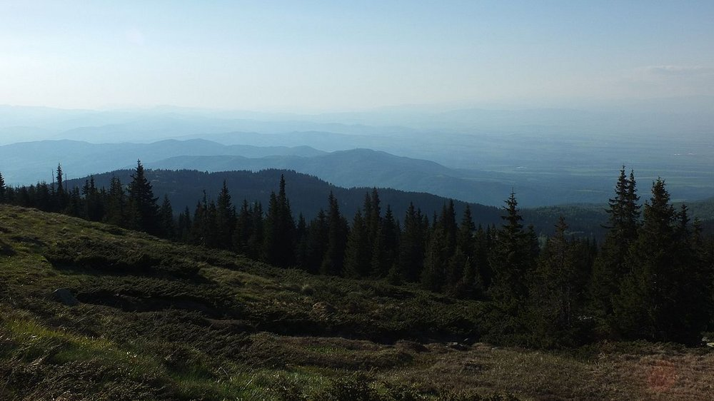Bistrichko Branichté Biosphere Reserve<br> Bulgaria