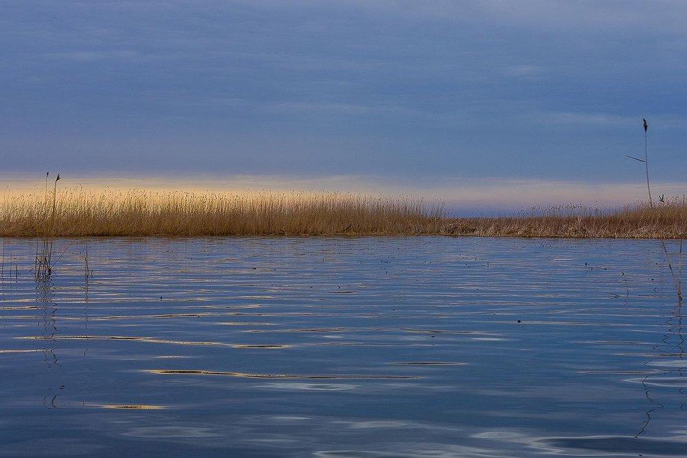Astrakhanskiy Biosphere Reserve<br>Russia