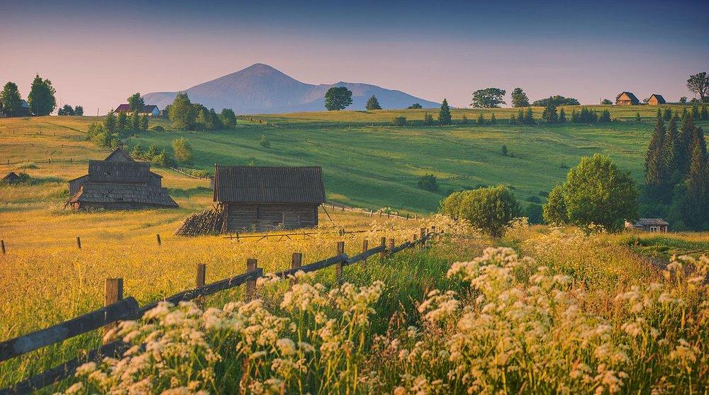 <b>Carpathian Biosphere Reserve <br> Ukraine</b> <br><br> Vian