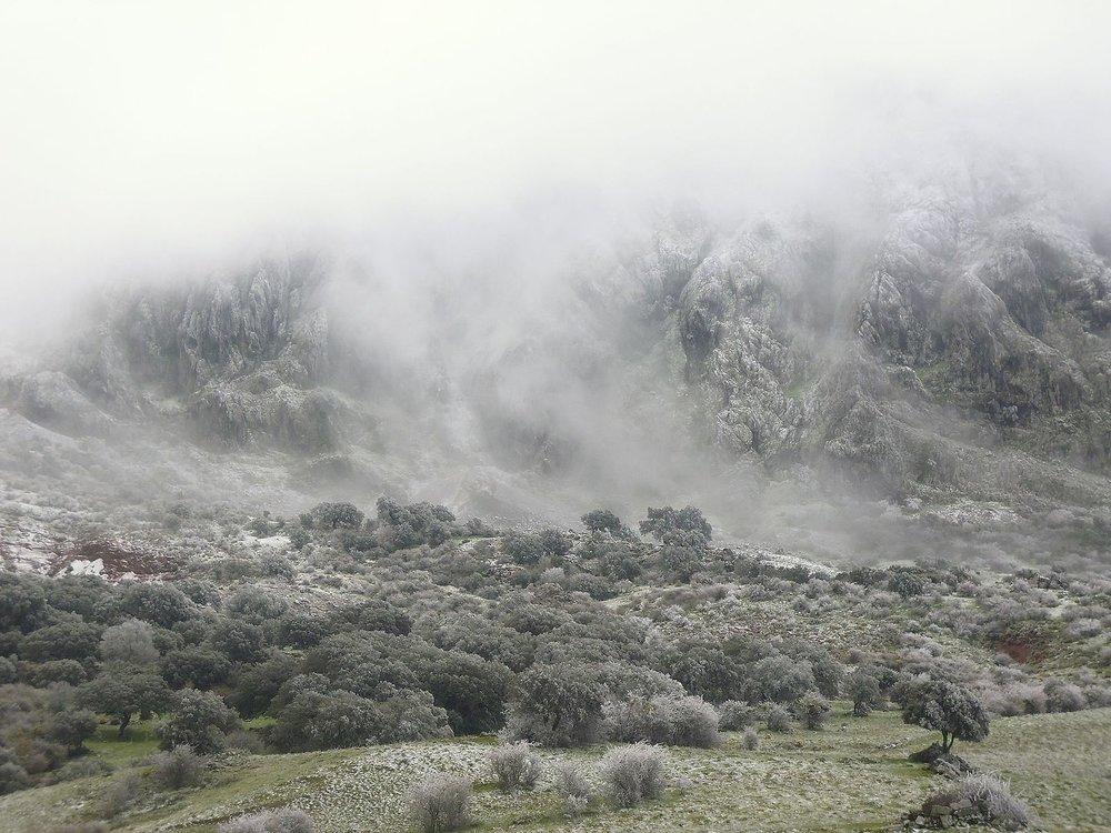 Nevada_Sobre_el_Caillo.jpg
