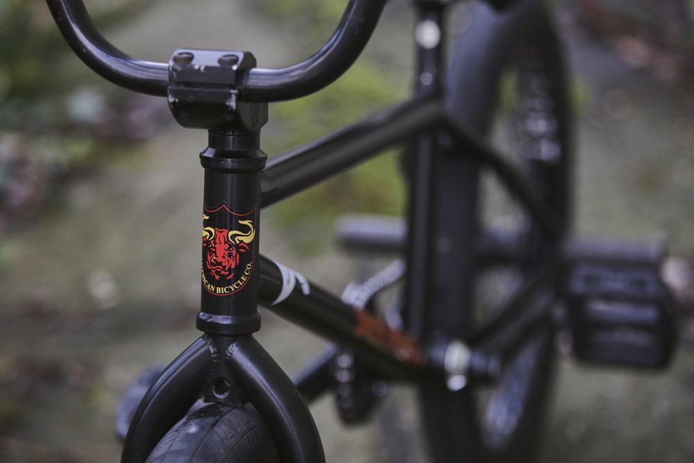 Bondeth Bike Check 3.jpg
