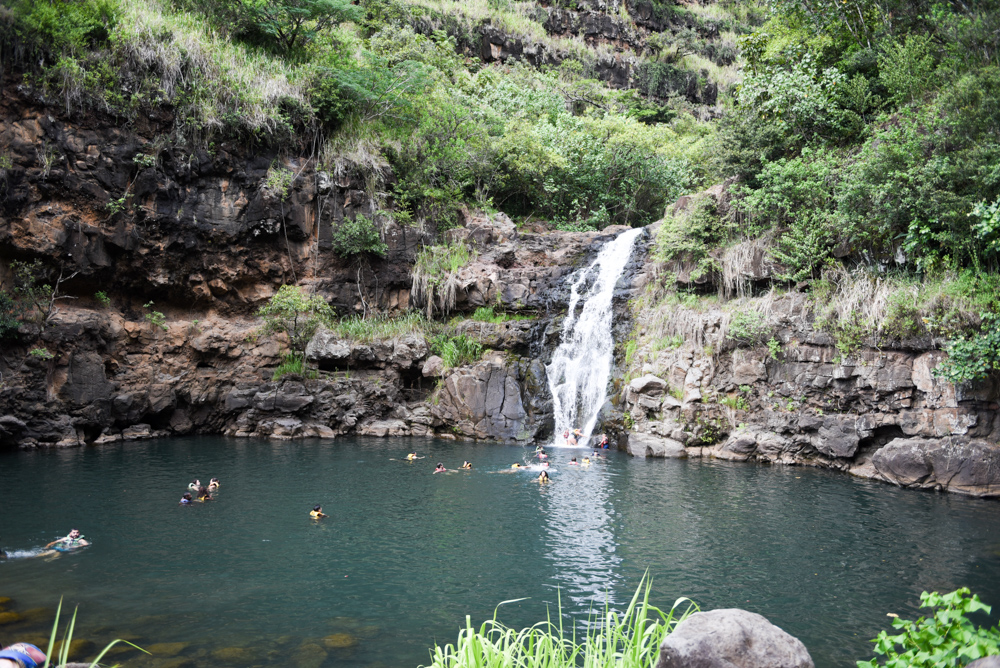 2017_05_31_Waimea_Valley_1.jpg