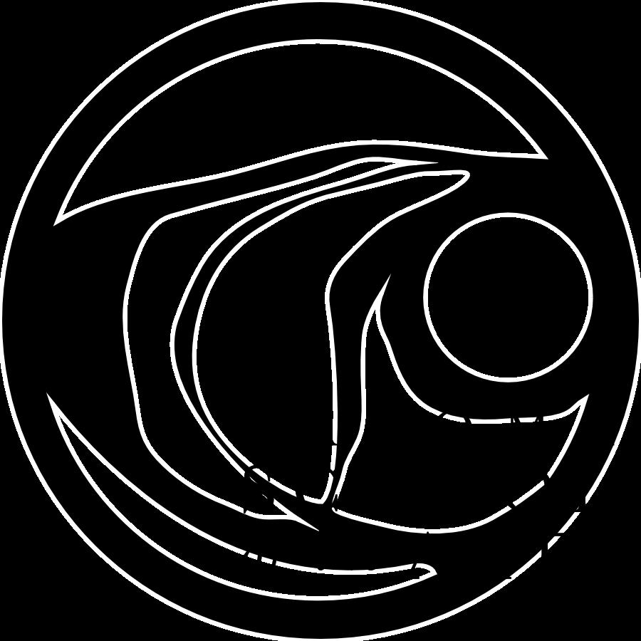 sota logo.png