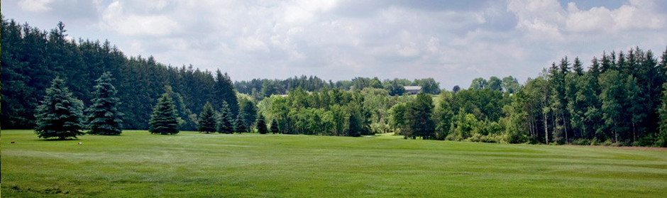Scottish Glen Fifth Hole Tee.jpg