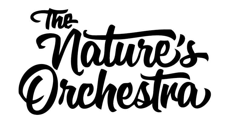 The Nature's Orchestra