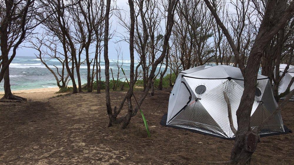 pod-at-beach.jpg