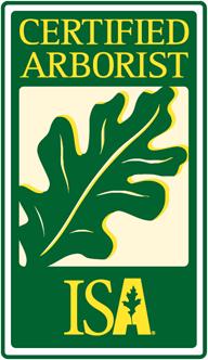 Certified Tree Arborist in Garrison, NY