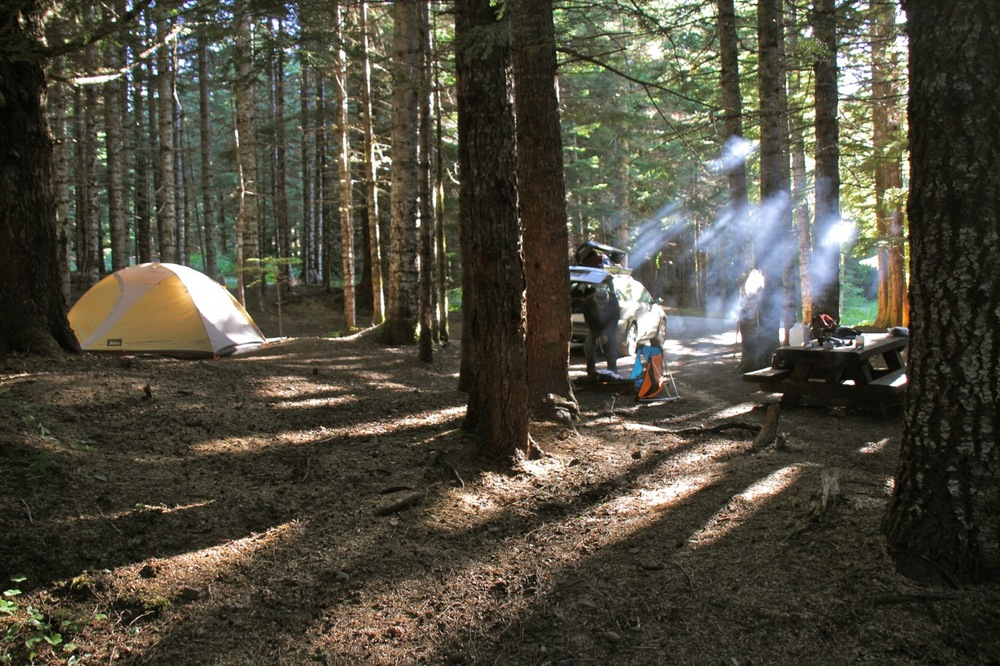 Camping at Mary's Peak