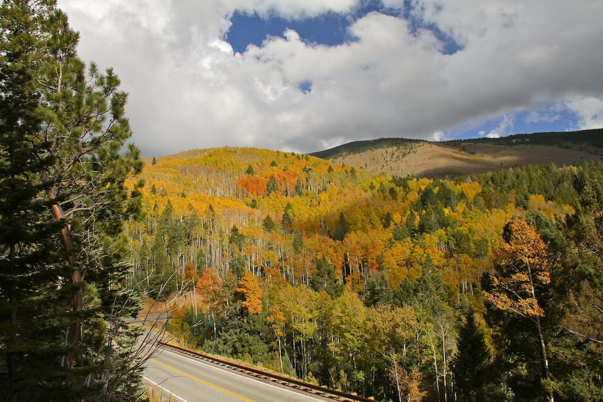 road to aspen vista