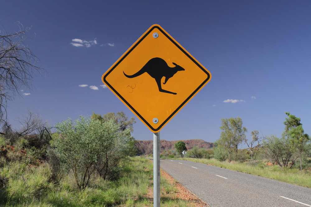 Classic Australia Road Sign Kangaroo Crossing