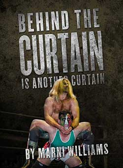 curtain-poster-image.jpg