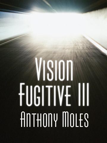 vision-fugitive