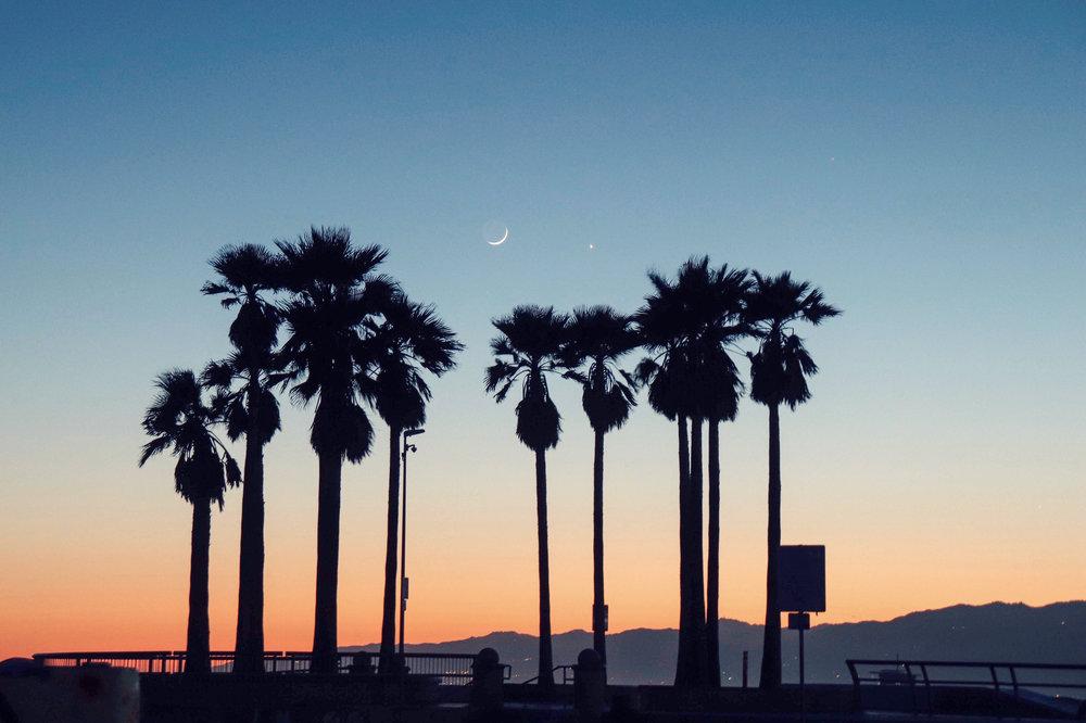 30 Minutes to Malibu -