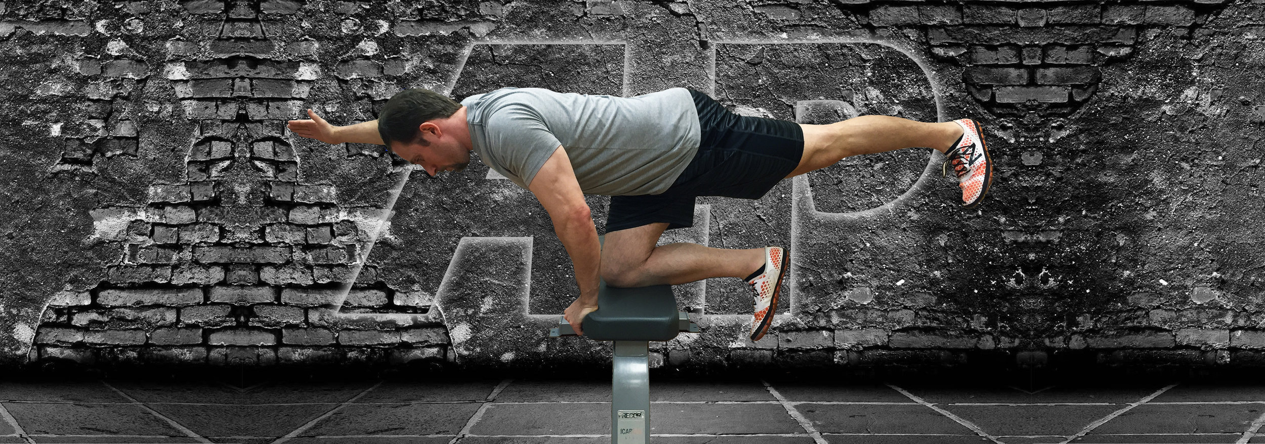 benefits of the quadruped  bird dog exercise   u2014 advanced human performance official website