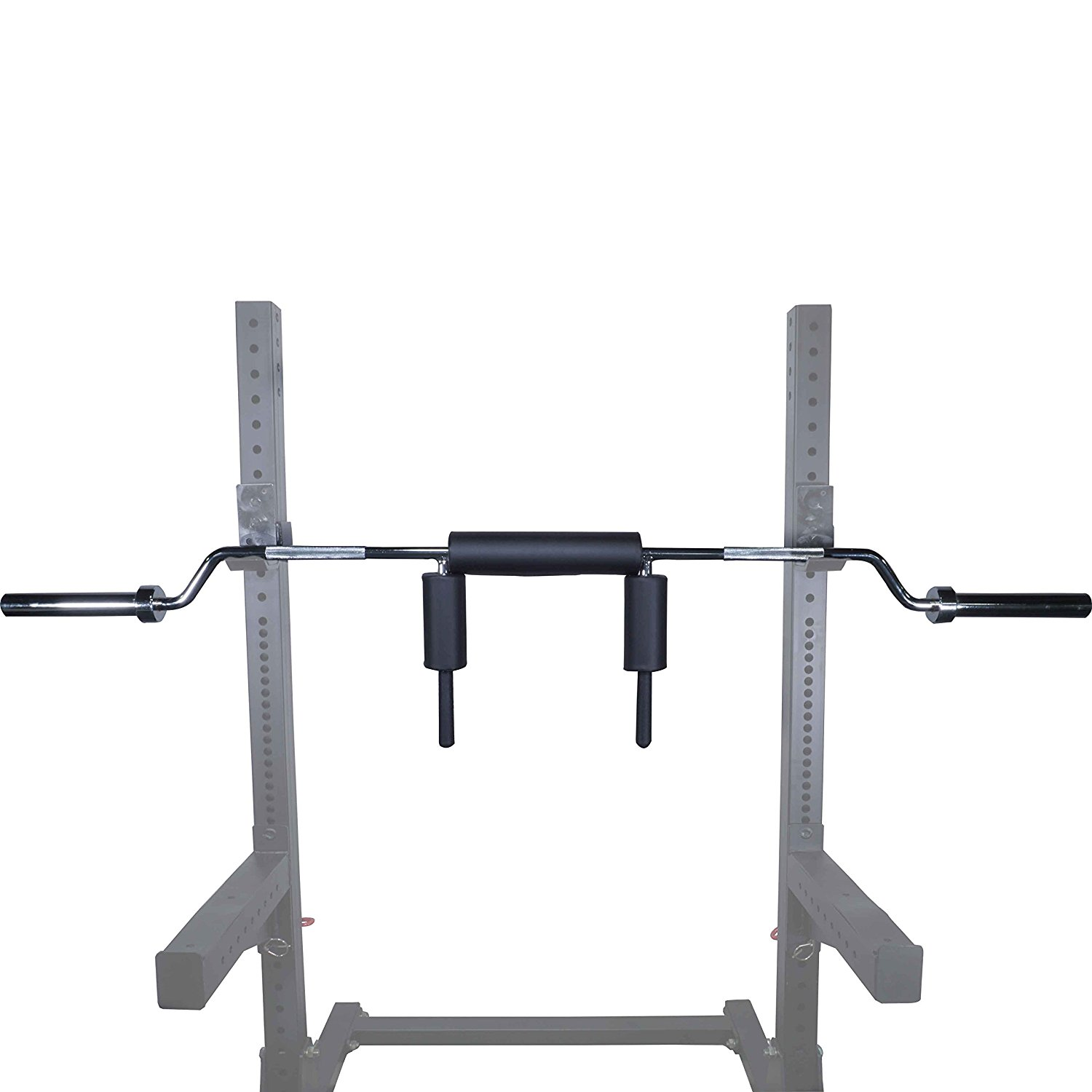 A New Way To Squat with The Makeshift Safety Bar — Advanced Human ...