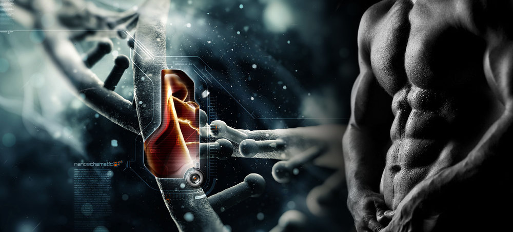 Official Website   Advanced Human Performance   Breaking Through Your Genetic Barriers