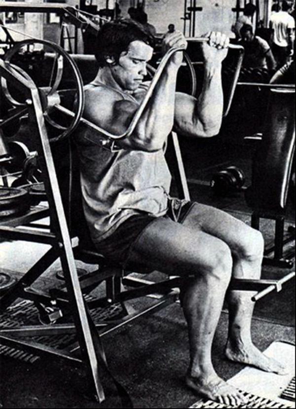 Pullove Arnold.jpg