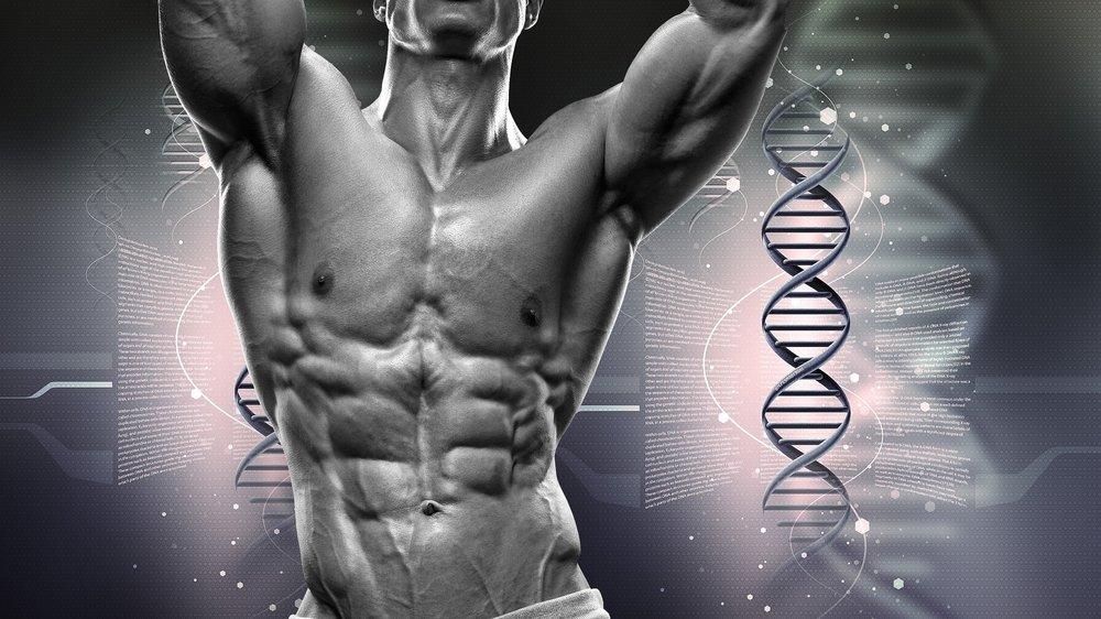 Bodybuilder and DNA.jpg