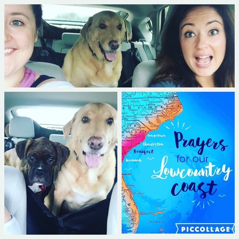 My sister, Meg, our two pups, Bodhi + Heartley, and I gettin' the heck outta dodge right before Hurricane Matthew made his way to the Lowcountry.