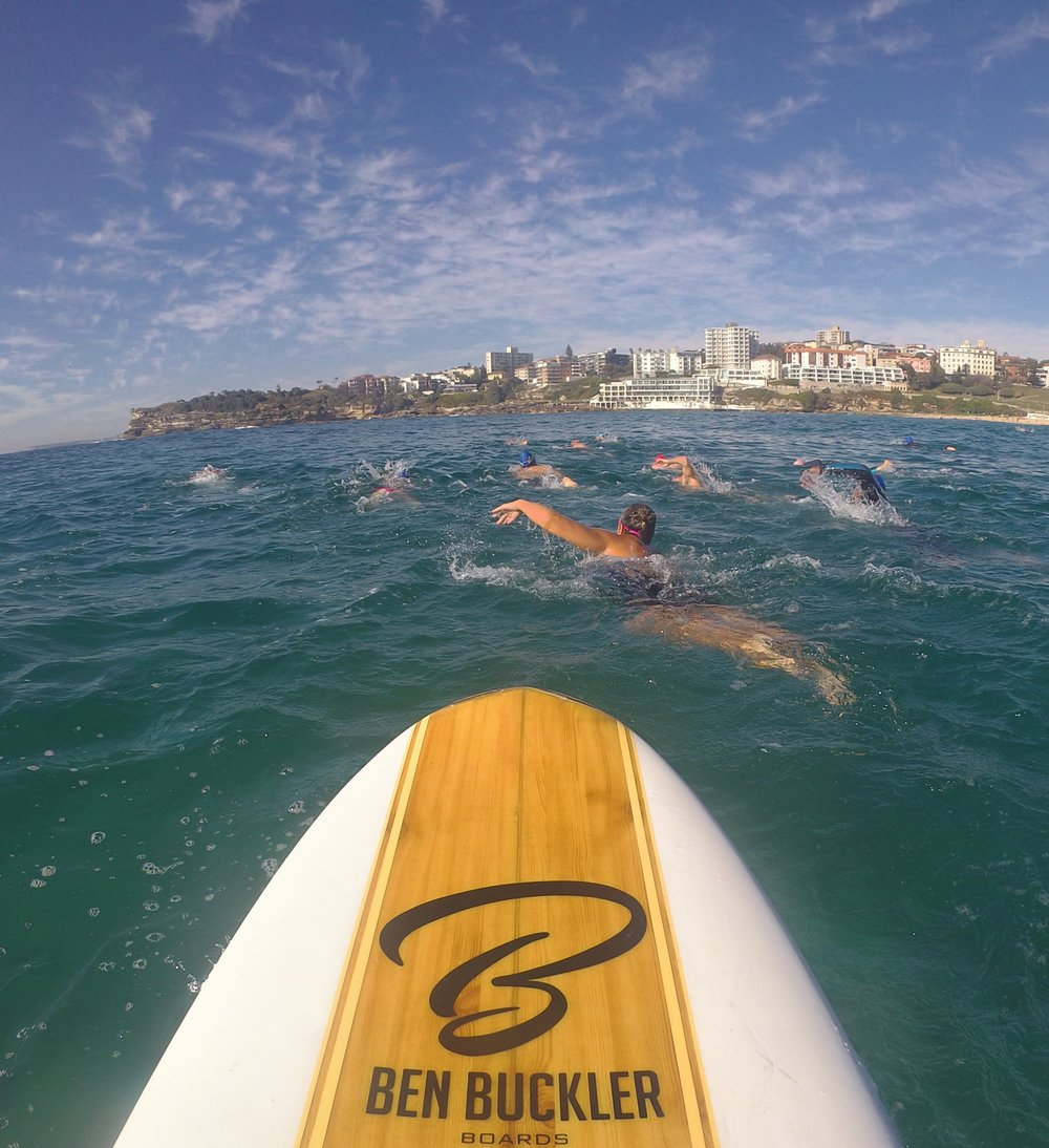 Swim across Bondi Bay with coach Spot on SUP