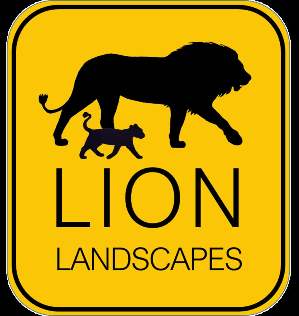 Lion Landscapes