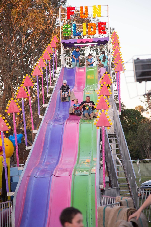 pink slide 6.jpg