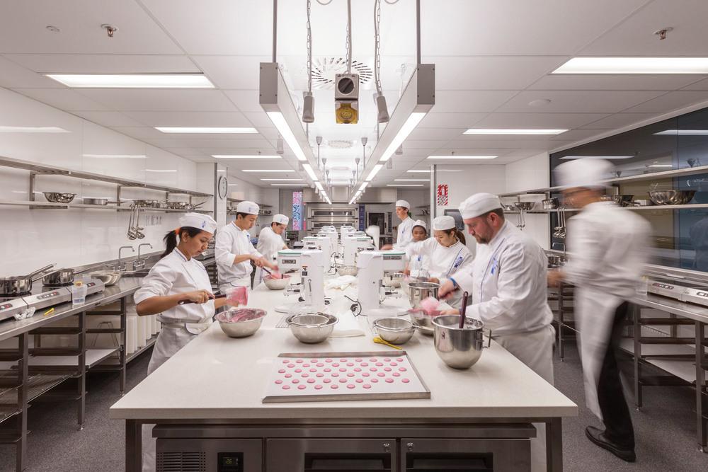 Le Cordon Bleu & WelTec School of Hospitality