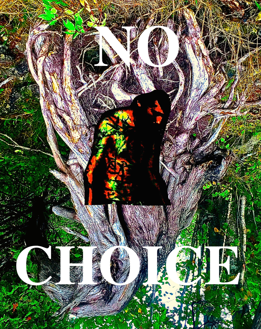 Ewert_No Choice.png