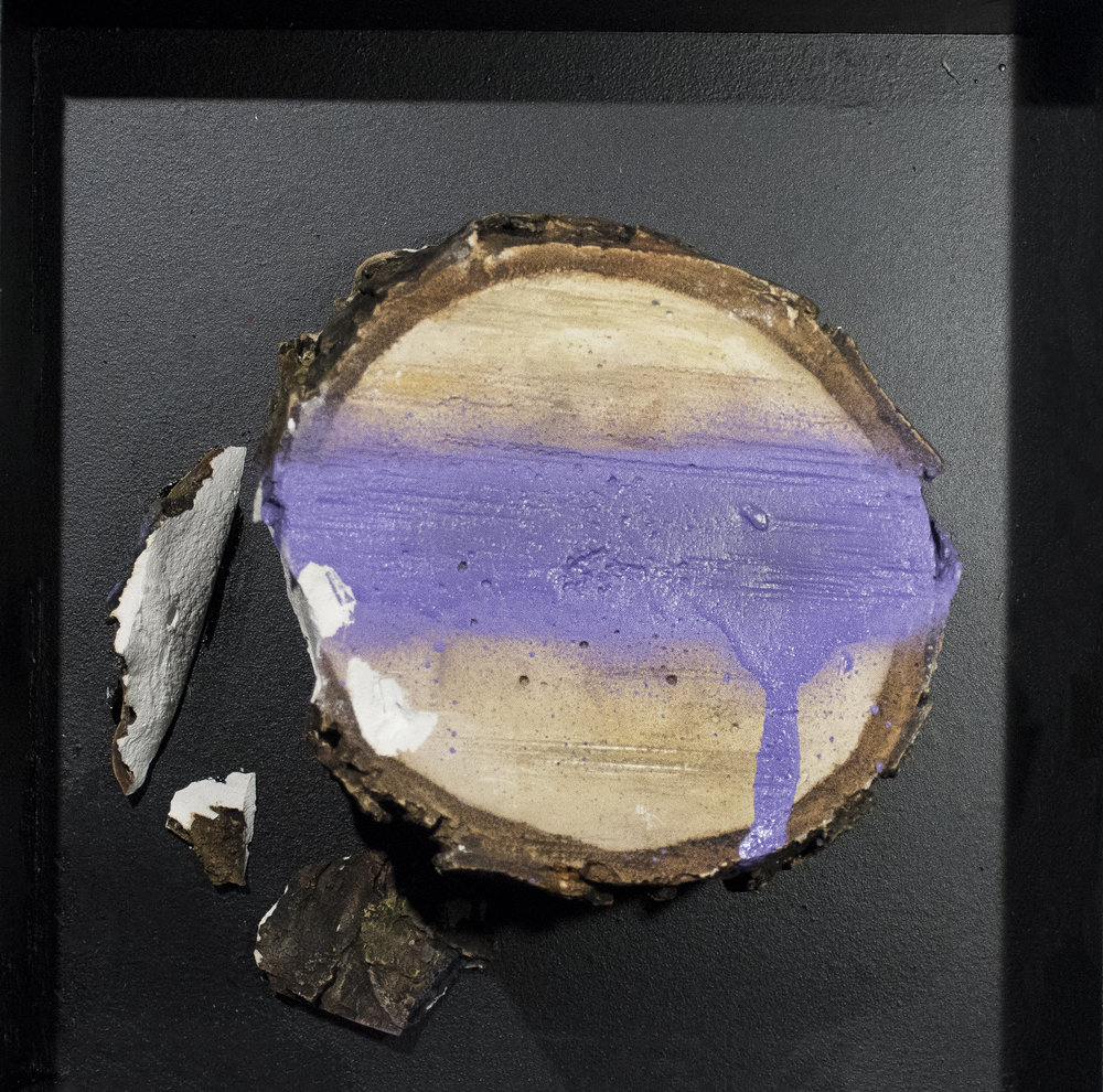stump purple 4.jpg