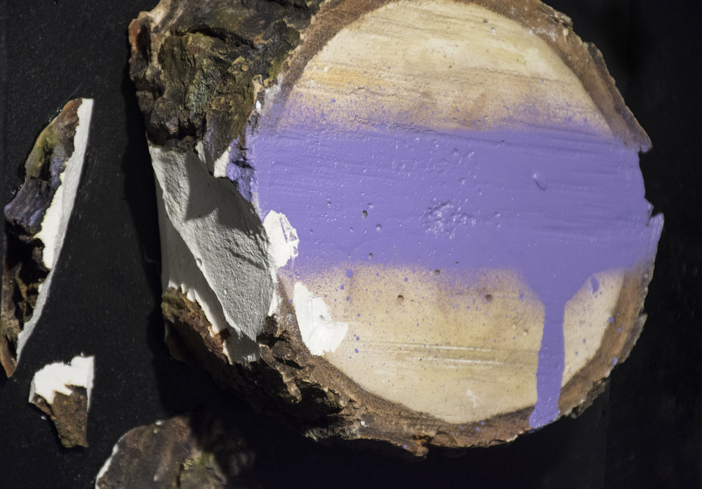 stump purple 3.jpg