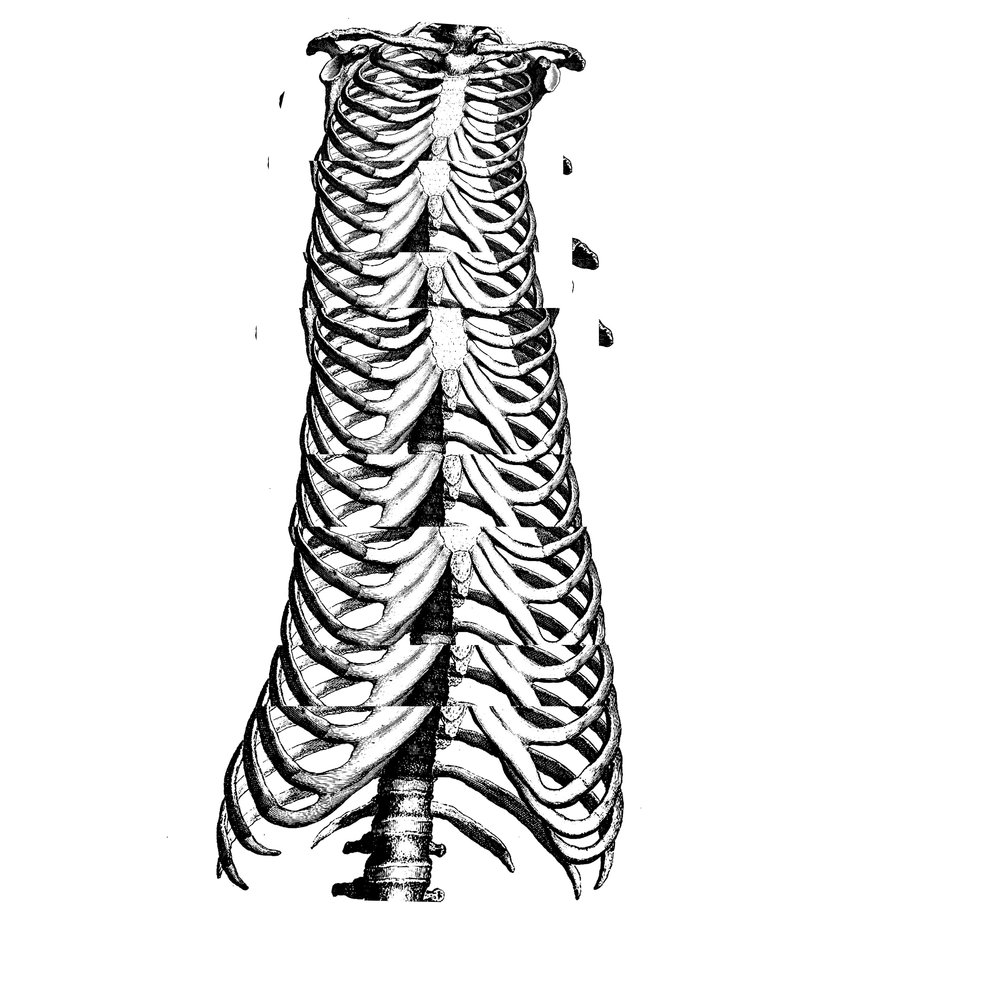 rib dress.jpg