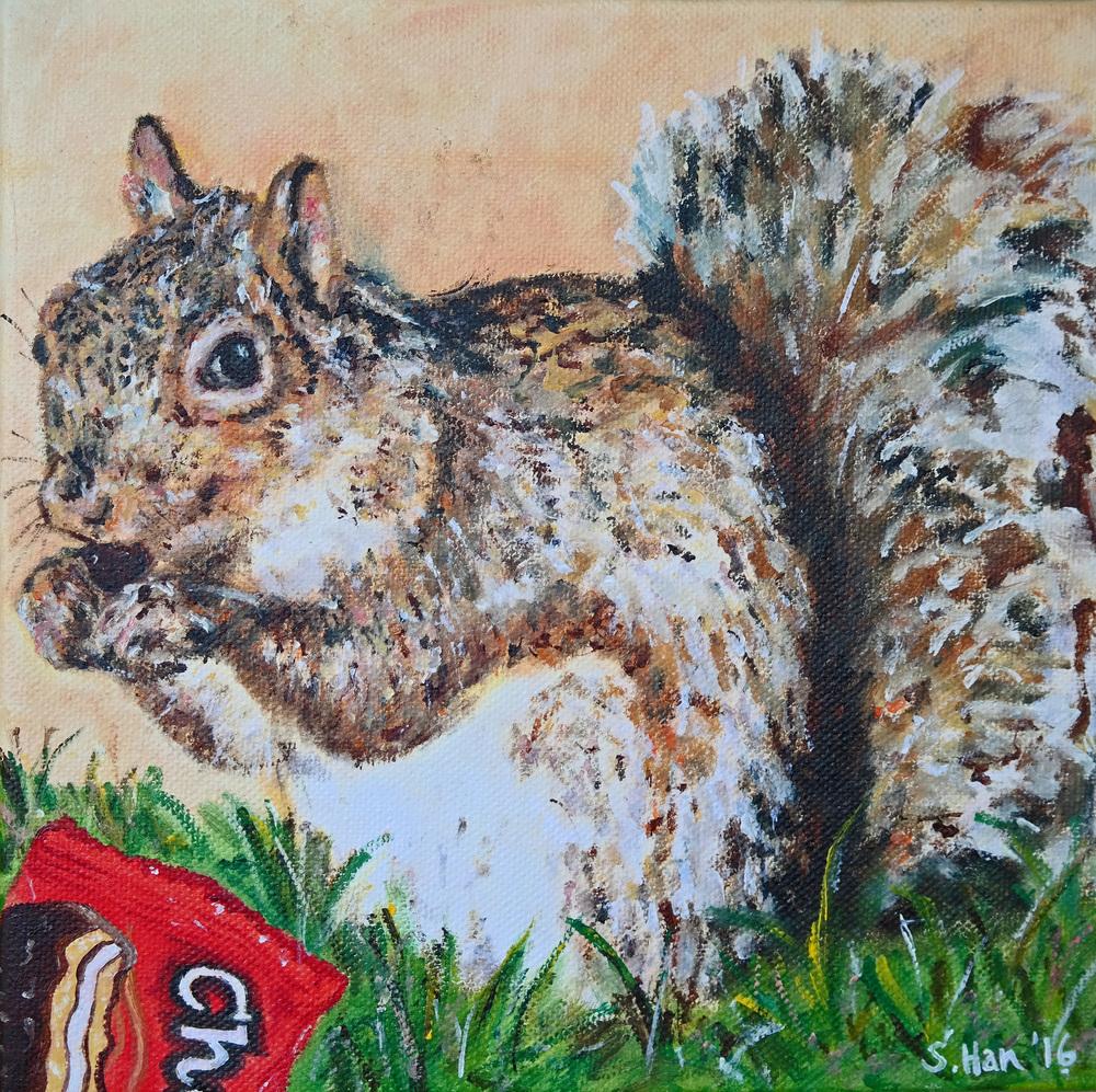 Choco Pie Squirrel