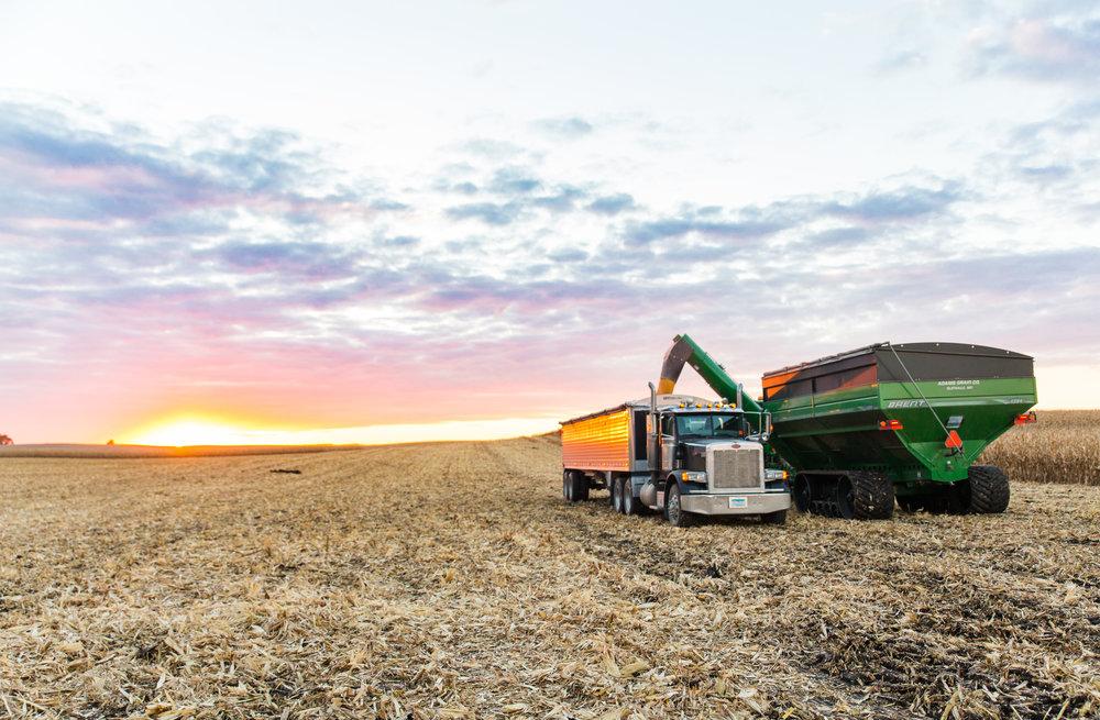 fall | harvest | sunset | john deere | combine | farming | midwest | dusk | corn harvest | stephanie lynn photography