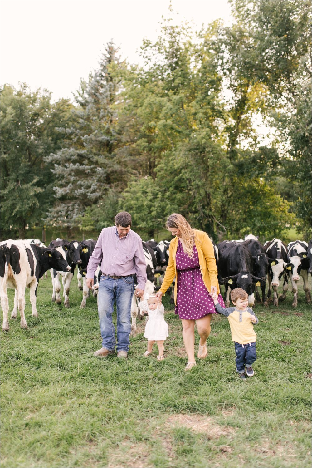 Farm Family Session_Midwest Wedding Photographer_Stephanie Lynn Photography_0078.jpg