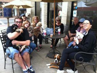 Group Dog Lessons Sept 2011.jpg