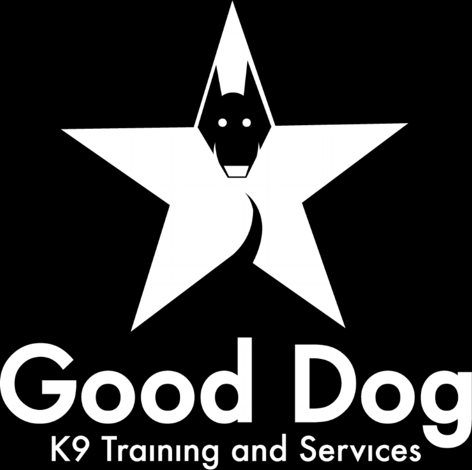 Customized Dog Training