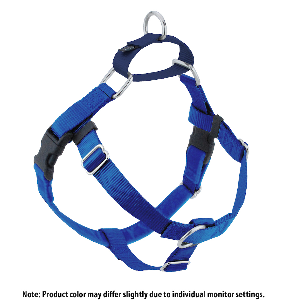 Freedom Harness -available upon request with training package. *Comes in different colors.