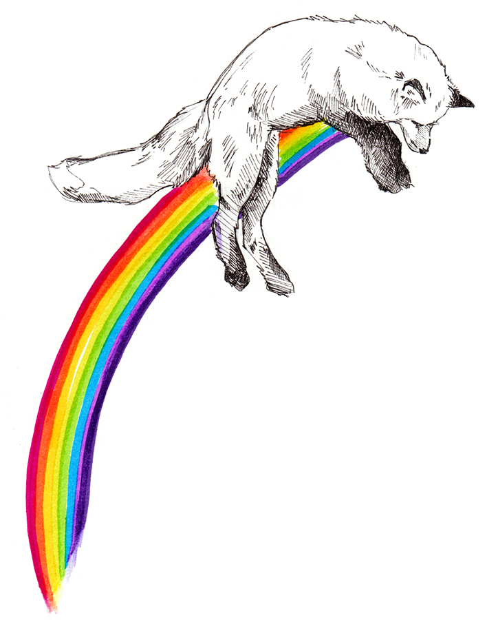 foxrainbow.png