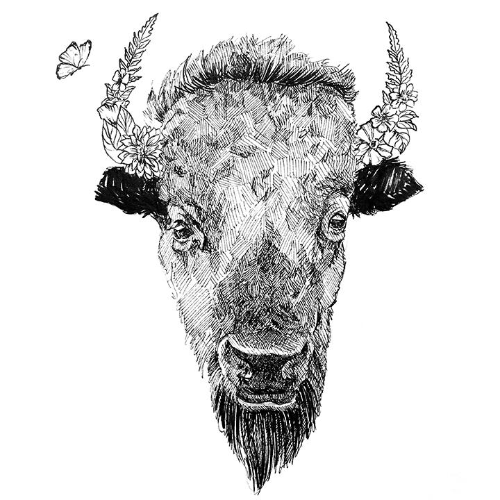 bison.png