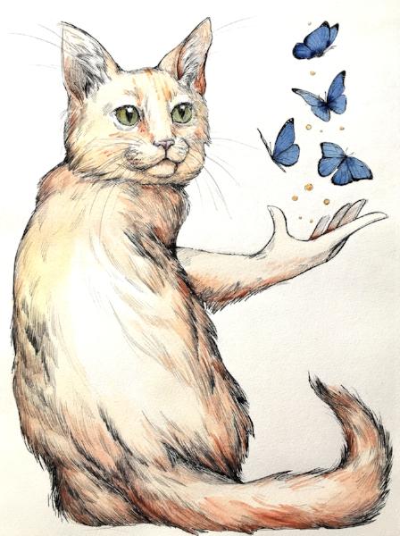 ButterflyCat.jpg
