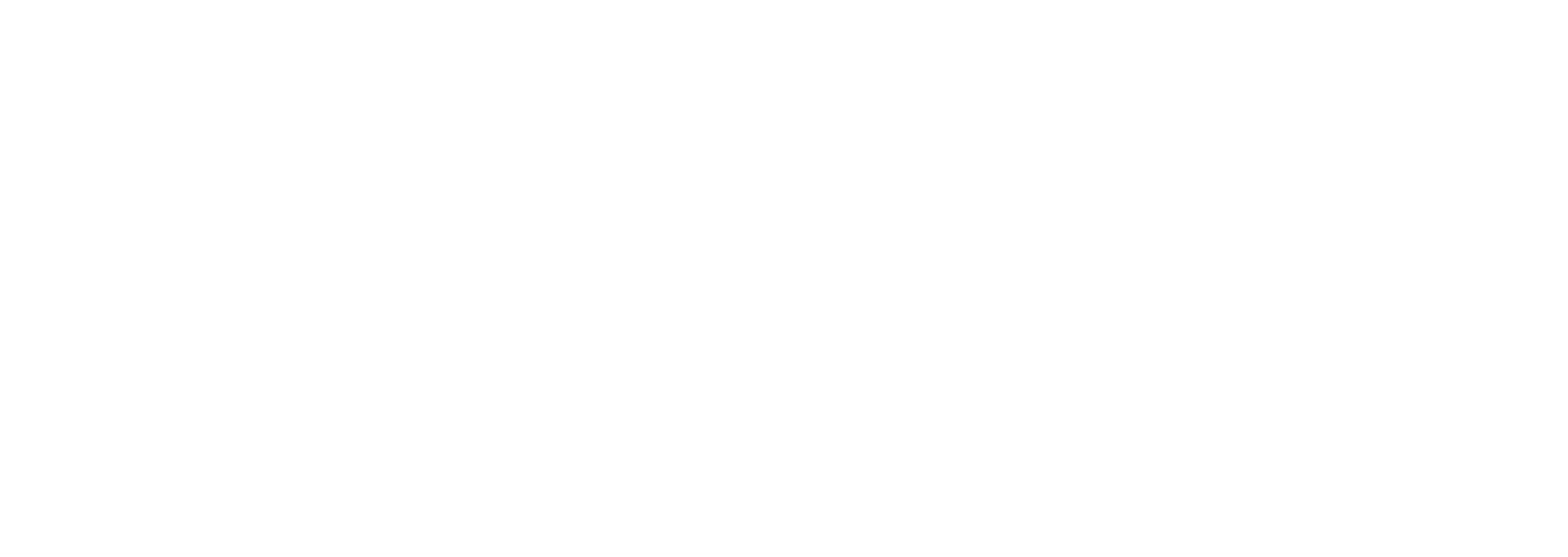 Merch Fan