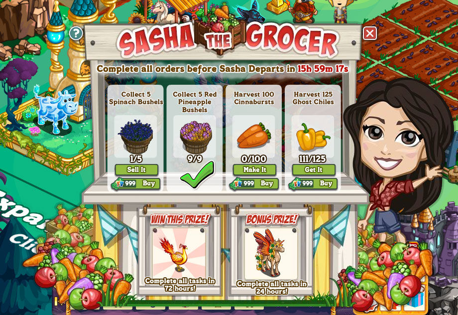 FV_SashaTheGrocer2013_main_2Rewards_onGameBoard.png