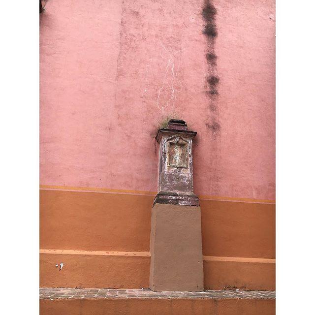 The perfect color scheme found outside a church in San Miguel de Allende ✨