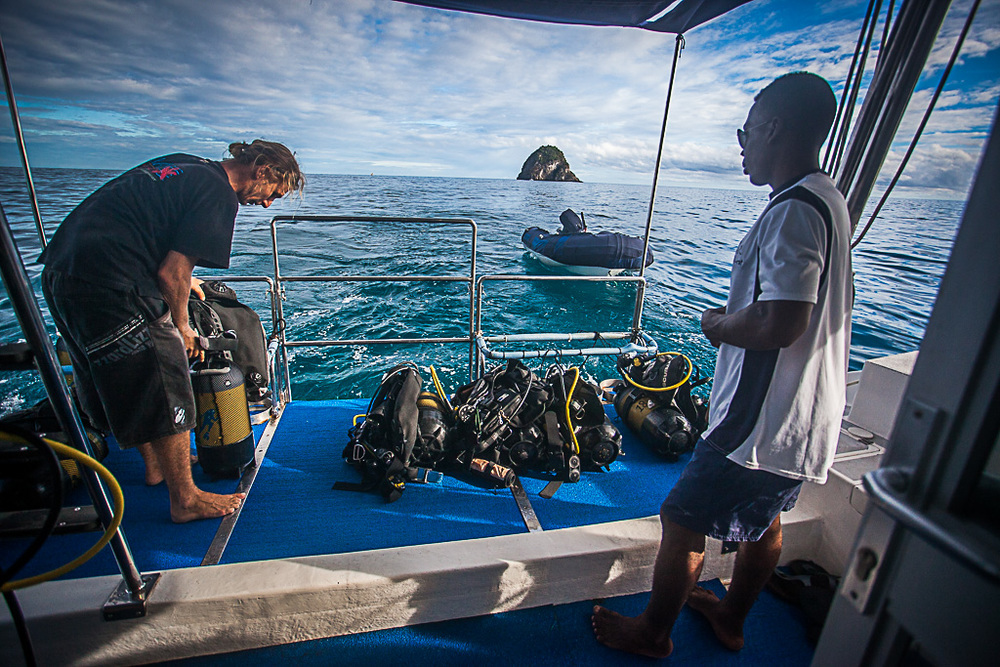 Diving Charters from a boat